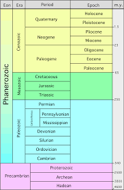 Era And Period Chart 38 Competent Paleozoic Era Chart