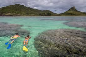 The lord howe island board is a statutory authority established under the provisions of the lord howe island act 1953. Shipwreck Snorkel Pinetrees Lodge Lord Howe Island