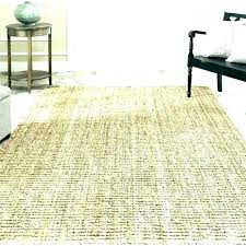area rug rugs 8 x 9 12x12 12 carpet outdoor foot are outdoor rug area