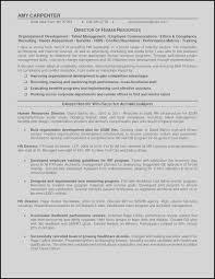 Pilot 2010 Fresh Resume Templates Line Resume Edit Service New