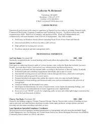 Sample Resume Hotel Income Auditor Wonderful Auditing Cover Letter