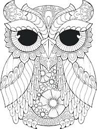 Coloring Pages Of Owls Colouring Owl Color Best 25 Pertaining To 6