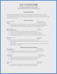 Professional Schedule Template Free 50 Curriculum Development Template Model Free