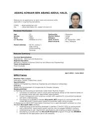 Sample Resume Format Pdf It Resume Cover Letter Sample