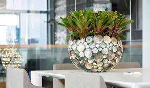Plant Interior Design New Design Ideas