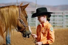 4 H Horse