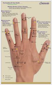 Acupressure Chart Reflexology Hand Chart Tips Guidelines For Hand