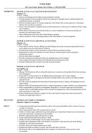 Senior Accountant, Revenue Resume Samples | Velvet Jobs