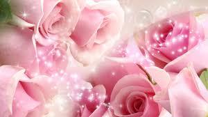 Beautiful pink roses, Flower wallpaper ...