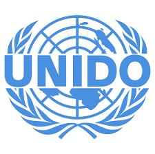 Essential Links For Member States Unido