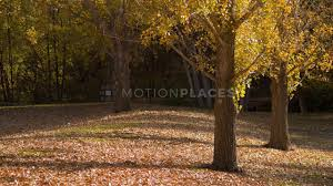 Fall Images Free Fall Free Stock Video Footage By Motion Places