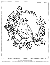 Small Picture Birds Christmas Coloring Pages Coloring Coloring Pages