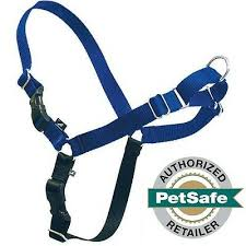 Petsafe Easy Walk Dog Harness Royal Blue Navy X Large