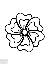 sure fire coloring book flower flowers all pages