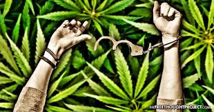 Image result for pot convictions pardoned