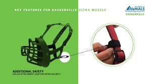 Baskerville Muzzle Size Chart How To Fit The Baskerville Ultra Muzzle