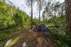 camping in the woods. Wonderful The Stock Photo  Wide Panorama Tent On Camping In The Woods For Camping In The Woods