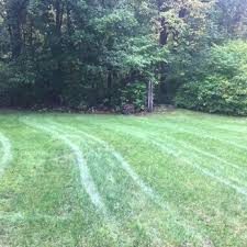 photo of trugreen lawn care rocky hill ct united states backyard again