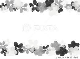 水彩フレーム 桜 モノクロのイラスト素材 34822792 Pixta