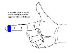 Trigger Finger Placement Chart 3 Trigger Pull With Pistols Canadianshooter