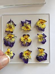 Attach Pressed Flowers