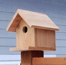 build your own birdhouse n diy easy out of popsicle sticks a wren plans