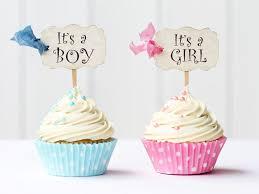 It S A Girl Announcement Ideas Tirevi Fontanacountryinn Com