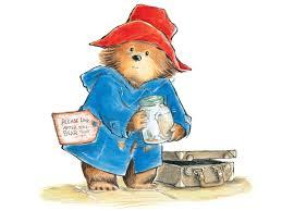 Image result for paddington bear