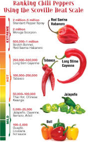 Chilli Hotness Chart Hot Peppers Muy Caliente American Chemical Society