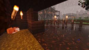 My fox Reily on a rainy day : Minecraft