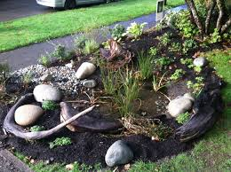 Small Picture Seattle Home Builder Interviews Landscape Architect About Rain Gardens