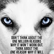 Women Who Run With The Wolves Quotes Enchanting Wolf Quotes And Sayings