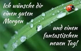 Ich Wünsche Dir Einen Schönen Tag Bonjour Good Morning Guten
