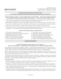 Director Of Information Technology Resume Sample information technology manager resume examples Thevillasco 36