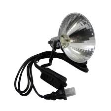 zilla halogen mini dome reptile heat light fixture