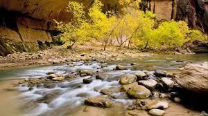 Nature Wallpapers Zip Free Download ...