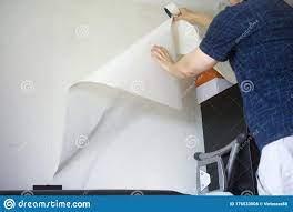 Man Holding A Peeling Wallpaper Stock ...