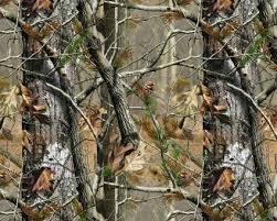 Image result for pictures of camouflage hunters