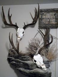 european deer mount ideas how to