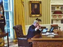 top youth oval office chair. is trump tweeting from a u0027secureu0027 smartphone the white house wonu0027t say top youth oval office chair