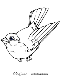 Small Picture Inspiring Coloring Pages Birds Cool And Best I 5363 Unknown