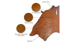 characteristics of a hide wrinkles bites scars on leather