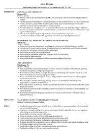 Sample Architect Resume Net Architect Resume Samples Velvet Jobs 21