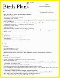 Birth Plan Images Birthing Plan Template Birth Australia Word Simple Uk