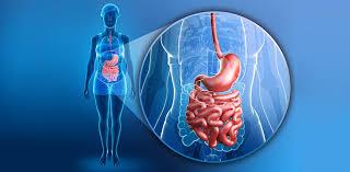 Job Oberarzt Gastroenterologie Schweiz