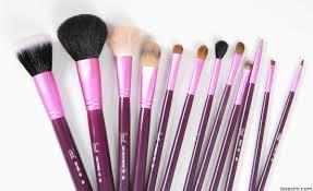 sigma make up brushes
