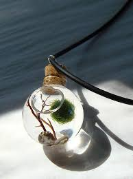 orb marimo moss ball mini ecosphere terrarium necklace by myzen