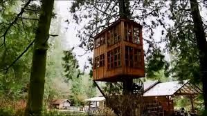 Treehouse masters treehouse point Nelson Treehouse Read More Read Less Trillum Treehouse Point Hiconsumption Worlds Most Ultimate Treehouses Treehouse Masters Animal Planet