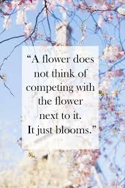 Beautiful Quotes On Flowers Best of 24 Great Motivational Quotes About Flowers Rockflower Vending