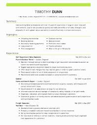 Service Delivery Manager Resume Sample Best Of Lovely Automotive